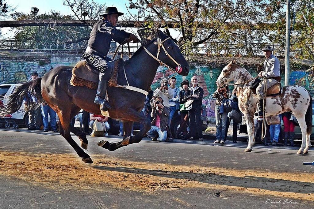 feira-de-mataderos-cavalo