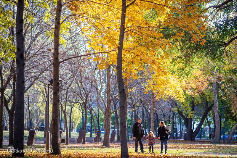 Outono 6